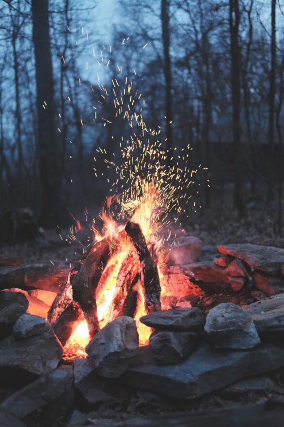 Et bål som brenner i skogbunnen